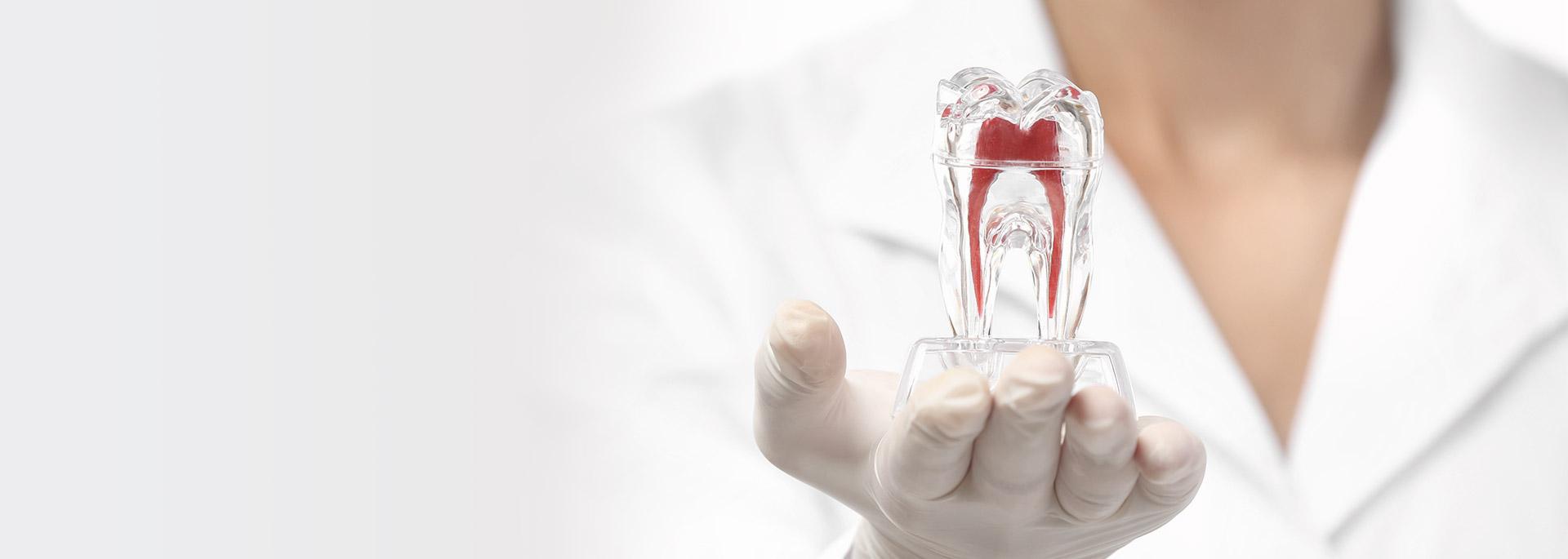 Urgence dentaire - header